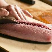 豊富な魚料理を提供しているので、毎日市場から新鮮な魚介類を仕入れています。徳島県で水揚げされたものと各地から届いたものと多くの種類を仕入れ調理したものは、お客さまにおいしいと喜んでいただいてます。
