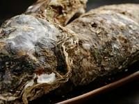 夏が旬の『岩牡蠣』。ボリュームも味も一級品です
