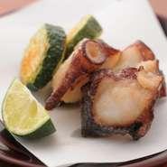 シンプルな天ぷらにしたズッキーニと佐島の地蛸。
