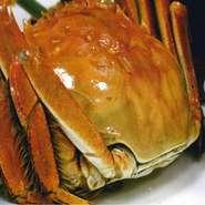 ※現地の新鮮な上海蟹をお楽しみ頂く為【1週間前に必ずご予約】下さい!! ※別途、飲み放題はプラス【1,500円】でお付けできます。 ※蟹単品は1匹【1800円】で追加可能!