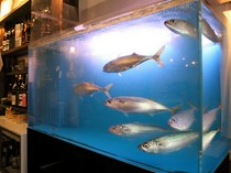 いけすを泳ぐ豊後サバ イキのいい鮮魚や旬の食材が堪能できる