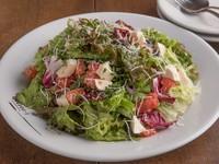 新鮮な生野菜のミックスサラダです。