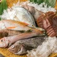 煮たり焼いたり。お好きなように調理いたします!魚種は季節ごとに変わります。