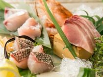 お刺身はお魚それぞれを一番美味しい切り方・炙り方でご提供