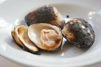 ハマグリの旨みを閉じこめた『蛤の炭火焼き』