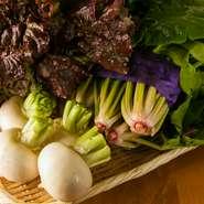 逗子の生産者直売所で野菜を仕入れてからお店に向かうのが日課。三浦野菜も扱っていて、その日の朝に採れた新鮮な野菜が手に入ります。素材から今日、何をつくるか考えることも多いです。