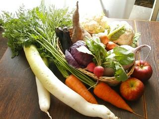 オーガニック野菜のボリュームたっぷりコース