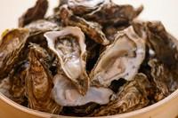 新鮮な旬の北海道産牡蠣を直送しております。ぷりっぷりで新鮮な牡蠣はお口いっぱいに広がる濃厚な旨味が特徴です。※産地はスタッフにお尋ねください。