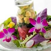 『マグロとアボカドのハワイアン風サラダ』 ※画像は一例です。