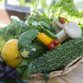 自家菜園で収穫した素材を中心に、地産地消にこだわりを