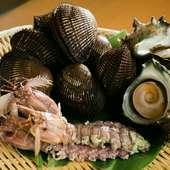 赤貝とシャコエビ