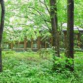 軽井沢らしい木立に囲まれた一軒家スタイル