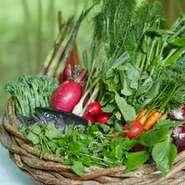 山に入り手にした木の実や葉物に始まり、桜鱒や野菜ひとつにおいても妥協は一切無し。その時期の味わいを見極め、それを最も適した調理で提供できればと思っています。信州すべてが食材ですね。