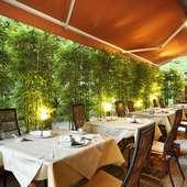 眼前に広がる新宿御苑の緑豊かな四季を楽しめるテラス席