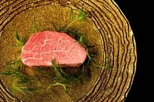 *銘柄牛の特選部位と高級食材をおしげもなく使用した極上コース♪