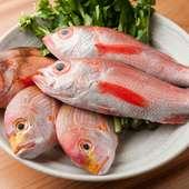 店内の水槽から揚げたばかりの旬の鮮魚を味わえる