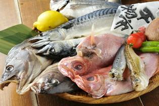 旬をとらえた新鮮な魚介類 品質と鮮度、保管にこだわります
