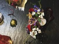 季節の食材を使って、お一人様一皿ずつご提供する、当店自慢のシェフこだわりのコースになります。