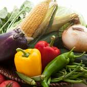 契約農家直送の新鮮な京野菜に舌鼓。素材本来の旨味を堪能