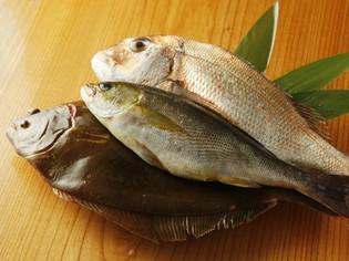 『旬の鮮魚』『加都茶豚』厳選素材の様々な楽しみ方をご提案