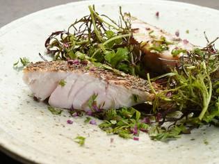 状態のよい旬の魚介を自家菜園の新鮮な野菜とともに