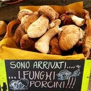 イタリア産フレッシュポルチーニやトリュフ、猪や鹿などのジビエ料理、カボチャや栗やサツマイモなどの秋野菜、美味しい秋の味覚をご用意してお待ちしております!
