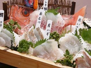 駿河湾の鮮魚と富士湧水ポーク。地元の海と山の恵み