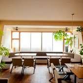 木製の家具と観葉植物。木のぬくもりに包まれゆったりくつろげる