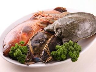 こだわり抜いて仕入れる新鮮な魚