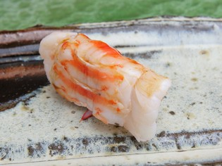 九州一の寿司ネタを求め、たどり着いた『天草産車海老』