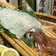 素材は、福岡県の漁業協働組合がブランド化しているヤリイカを使用したお刺身。甘みがしっかりとあり、弾力のある食感は妙味です。尚、お造りを希望すると、ゲソなどを塩焼きもしくは天ぷらで食べられます。