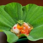 蓮の葉にのった水滴をイメージ。鱧の落としと車海老、トマト、南瓜に土佐酢のジュレをかけた一品です。鱧の落としの皮目にそっと忍ばせたワサビが味を引き締め、土佐酢の酸味と旨みが口の中に染み渡ります。