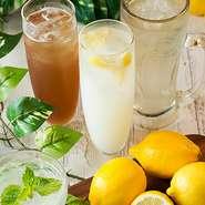 ●極みレモンサワー ●オホーツク海塩レモンサワー ●カルピスレモンサワー ●ミント香るレモンサワー ●レモンティーサワー ●発酵レモン酢サワー ●バタフライレモンサワー