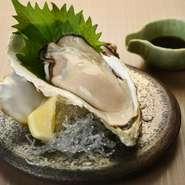 身が大きく、クリーミーな仙鳳趾産のカキを生で楽しむことができます。レモンをかけて食べると、さっぱりとしていて爽快。添えられている透明の海藻も食べられます。 ※厚岸産の生カキもあります。