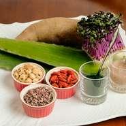無農薬野菜のサラダと前菜盛り合わせ ・本日のおすすめ生パスタ(ソース3種、生パスタ4種から選べます。スタッフにお尋ねください。) ・自家製天然酵母の全粒粉パン ・ソフトドリンク ・ドルチェ