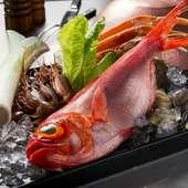 瀬戸内でとれた新鮮なお魚
