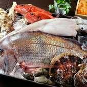 四季折々の豊富な魚介が水揚げされる、三陸の海の幸