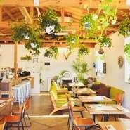 リゾート地のような開放的な空間で、木のぬくもりと心を癒してくれるグリーンに囲まれたイタリアンカフェ。