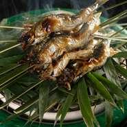 琵琶湖の鮎を頭を下にして油を垂らしながら頭はカリッと、身はふっくらと焼き上げます。中川一辺陶作のる炭鉢に、笹を敷き客前で笹の香りを鮎にまとわせて。初夏のご馳走です(写真は5月の献立の一例です)