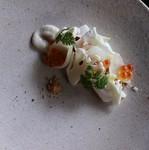・軽い一口料理 ・前菜1 ・前菜2 ・メイン(肉) ・季節の果物を使ったデザート ・小菓子