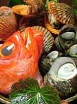 旬魚や、贅沢な料理を味わえます!お客様のリクエストにもお応えします。お気軽にご相談下さい