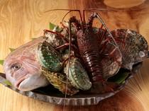 鮑や帆立、伊勢海老など活きの良い魚介類