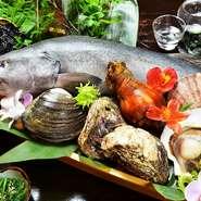 魚介類は質と鮮度にこだわって厳選。北海道から届く銀タラは、『銀タラ刺』でいただけるほど鮮度抜群です。野菜は、福島の農家と直接契約をするこだわりよう。『京子ママの手づくりおしんこ』がおすすめです。