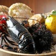 ブルターニュ産「オマール海老」を始め、北海道函館漁港から直送している「鮮魚」や気仙沼産の「帆立貝」、全国各地から選りすぐりの「有機野菜」など、各地の上質な食材をご堪能いただけます。