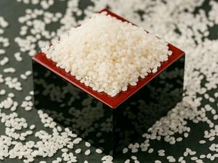 精米方法にもこだわった極上のお米