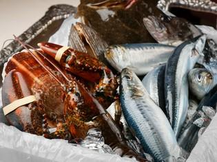 三陸をはじめとした、東北地方の新鮮で良質な魚介類