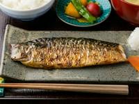 昼は『鯖の塩焼定食』(鯖の塩焼、ご飯、味噌汁、小鉢付き)、夜は単品料理でお酒とともに楽しめます。