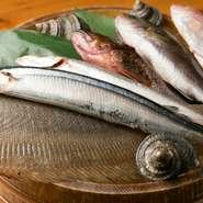 和歌山県、徳島県、淡路島の三角形でつくられた紀伊水道海域。多くの漁港が点在しており、脂の乗った美味しい魚が多く水揚げされています。【魚吟酒場】では、直接船や漁港から買い付けることもしばしば。