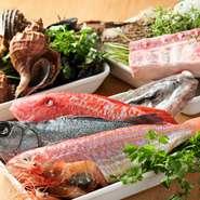 使用されている食材は、鮮度の良い地元産の魚介や野菜。シェフ自ら市場に出向き調達した質の良い食材ばかりです。これにイタリアの食材を組み合わせることで、本場の味を見事に再現しています。