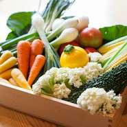 糸満市の農家でつくられた新鮮野菜を入荷しています。黄色いズッキーニや大きな島らっきょう、彩り豊かな人参など、季節の野菜をこだわりの肉や魚と共に。